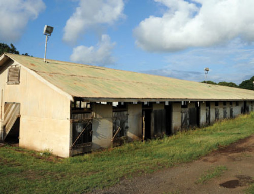 Hali'imaile Stables (2009)