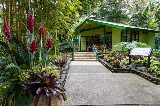 Foster botanical garden historic hawaii foundation for Foster botanical garden honolulu