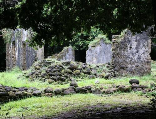 Kaniakapupu Ruins (2016)